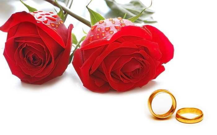 love marriage paragraph